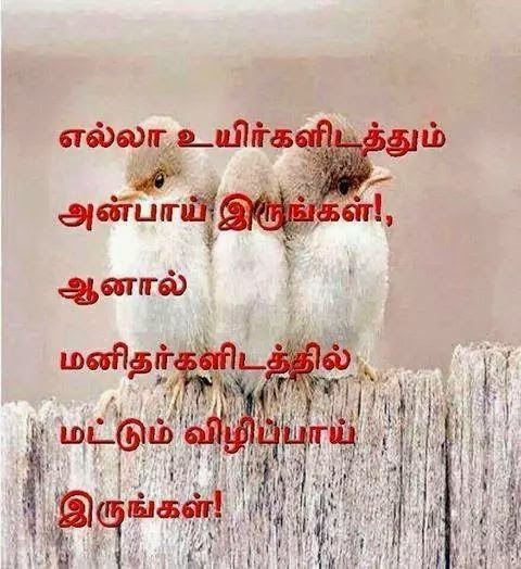 Beautiful Tamil Quote Image World