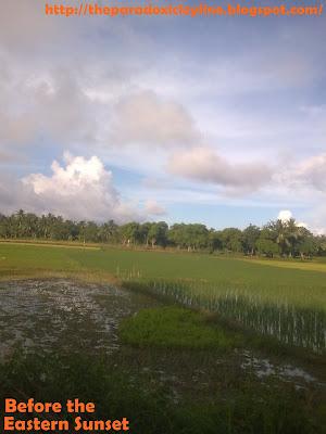 Camarines sea