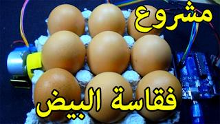فكرة عملية تقليب بيض الدجاج في الفقاسة