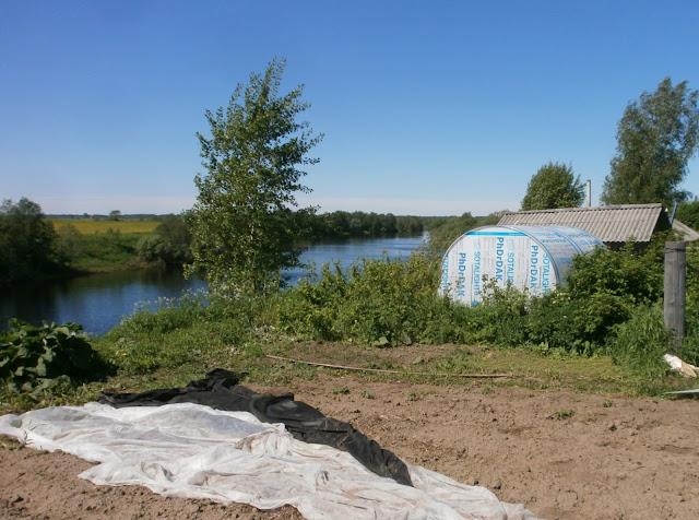 Теплица PhDrDAK специального расположения на берегу реки Моша в Мозолово