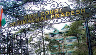 hp high court