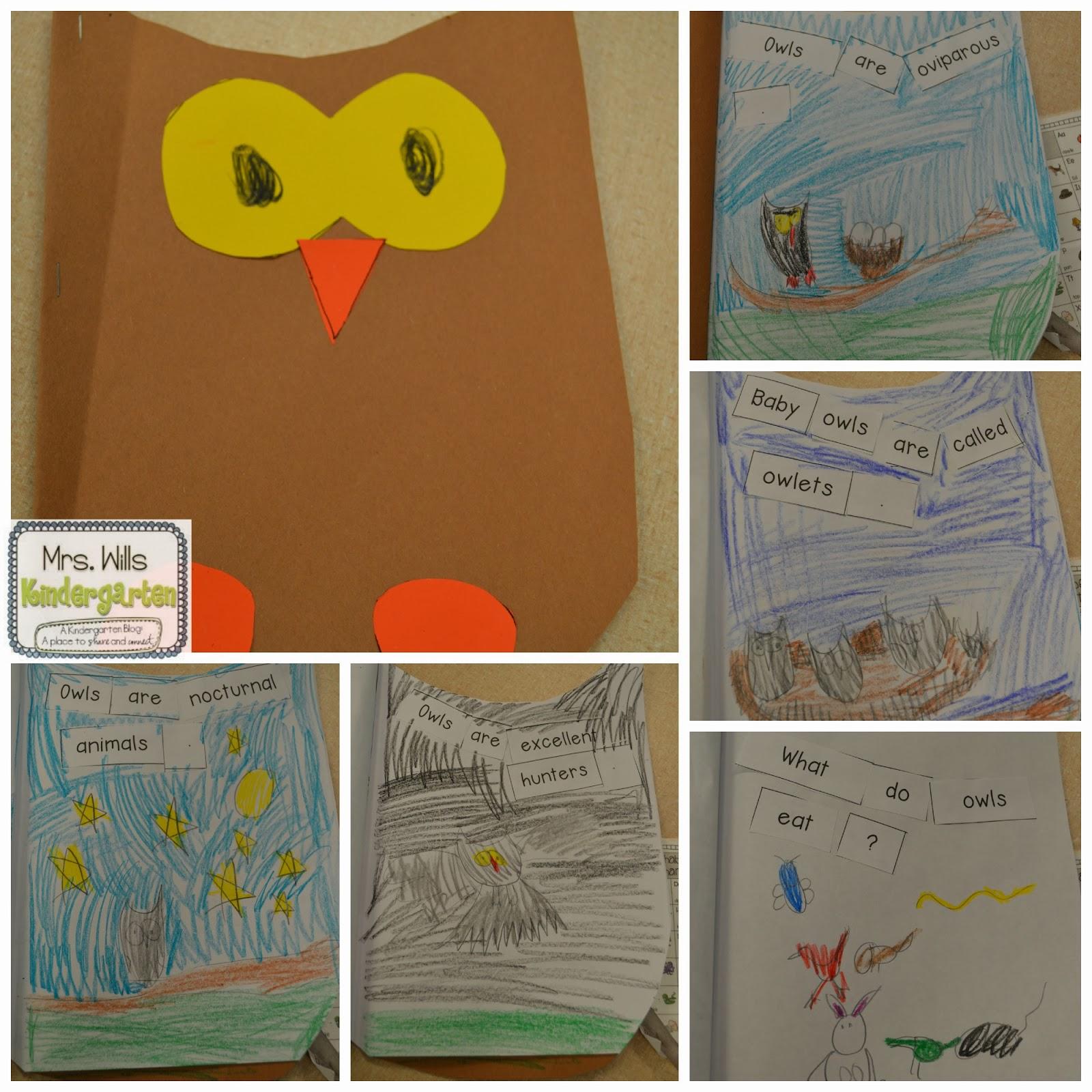 Owl Lesson Plans Peek At My Week