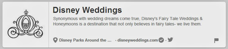 Wedding Pinterest Boards to follow | Disney Weddings | DollfaceBlogs