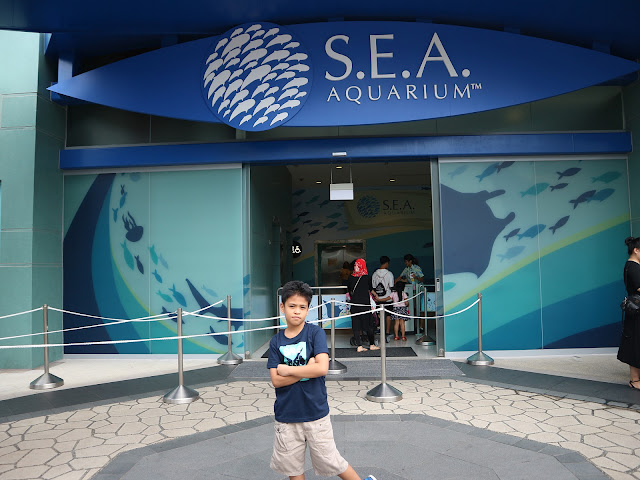 Singapore S.E.A. Aquarium