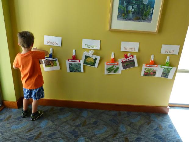 Preschool Activity Growing Vegetable Soup