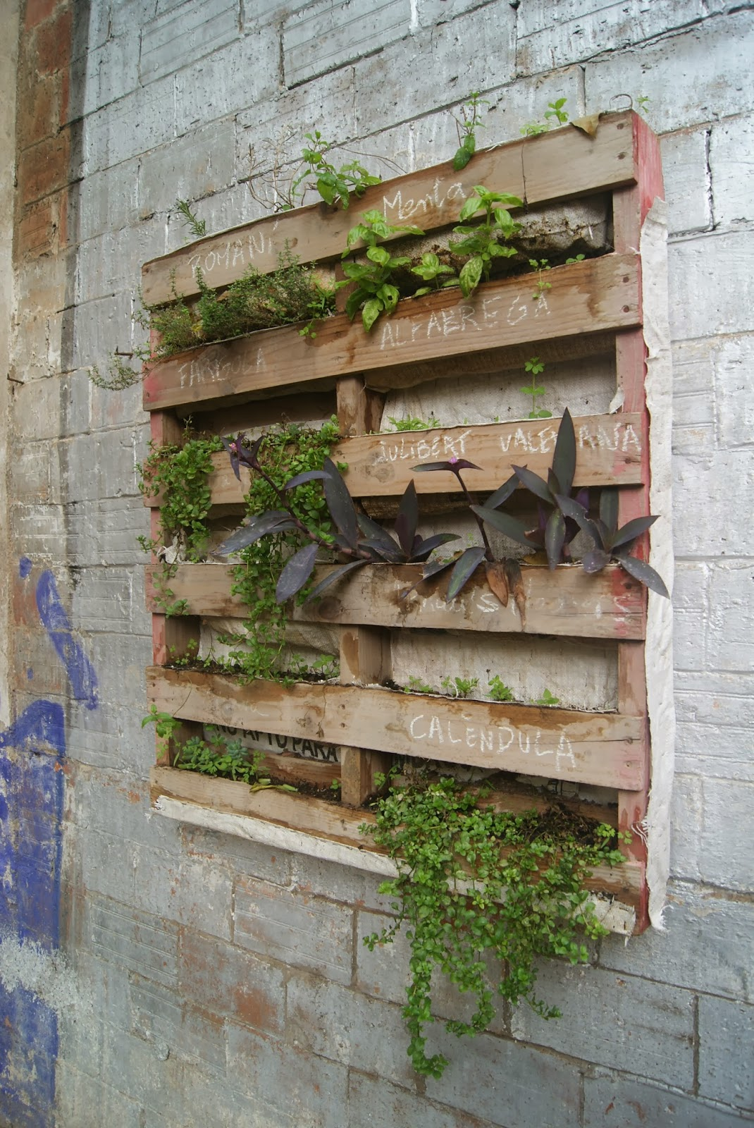 Real World Gardener: Everything You Need to Know About Vertical ...