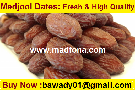 Moroccan Medjool Dates: Fresh & High Quality