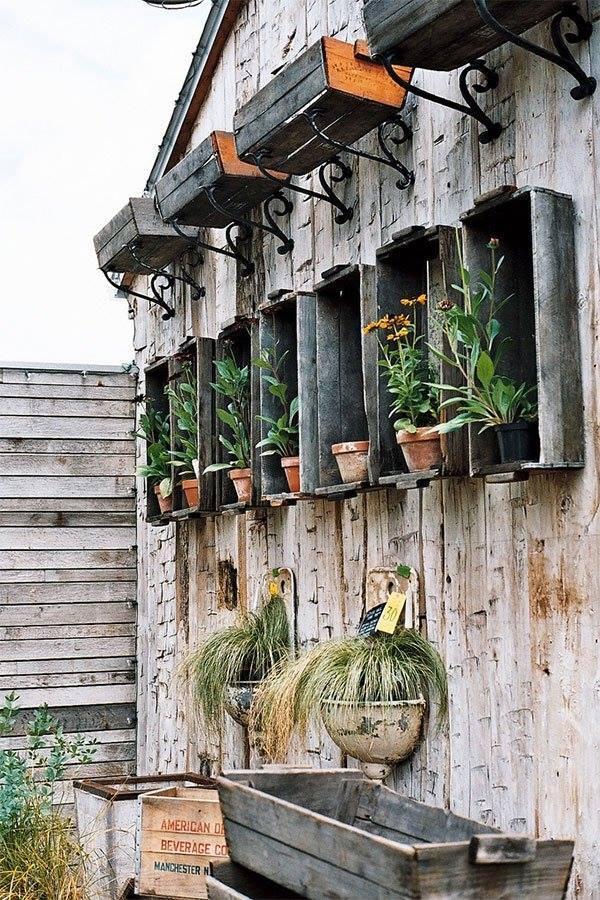 jardim externo reutilizar caixotes de madeira plantas nicho
