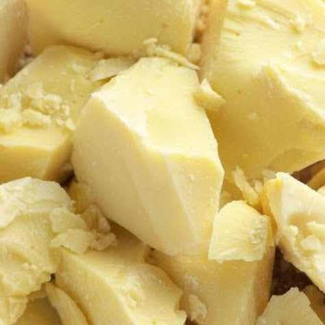 Bơ ca cao là một loại thực phẩm vừa tốt cho sức khỏe lại có tác dụng làm đẹp hiệu quả