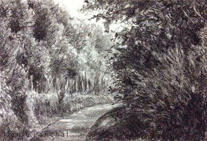 Charcoal painting of Coorg Landscape created using willow charcoal and charcoal pencils. By Manju Panchal