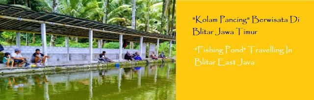 https://ketutrudi.blogspot.com/2018/10/kolam-pancing-berwisata-sembari.html