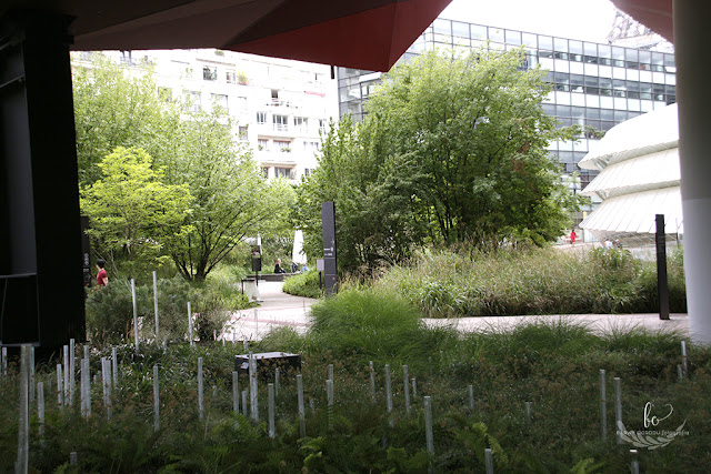 Paryż ogród