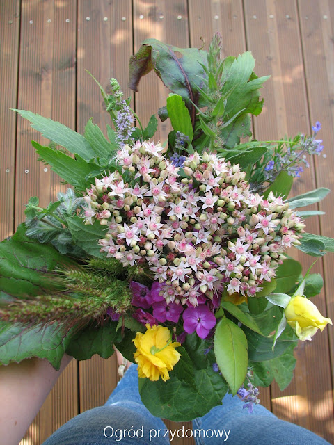 Święto Matki Boskiej Zielnej, ogród przydomowy