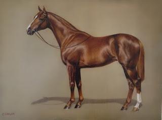 belleza-y-elegancia-en-cuadros-de-finos-caballos