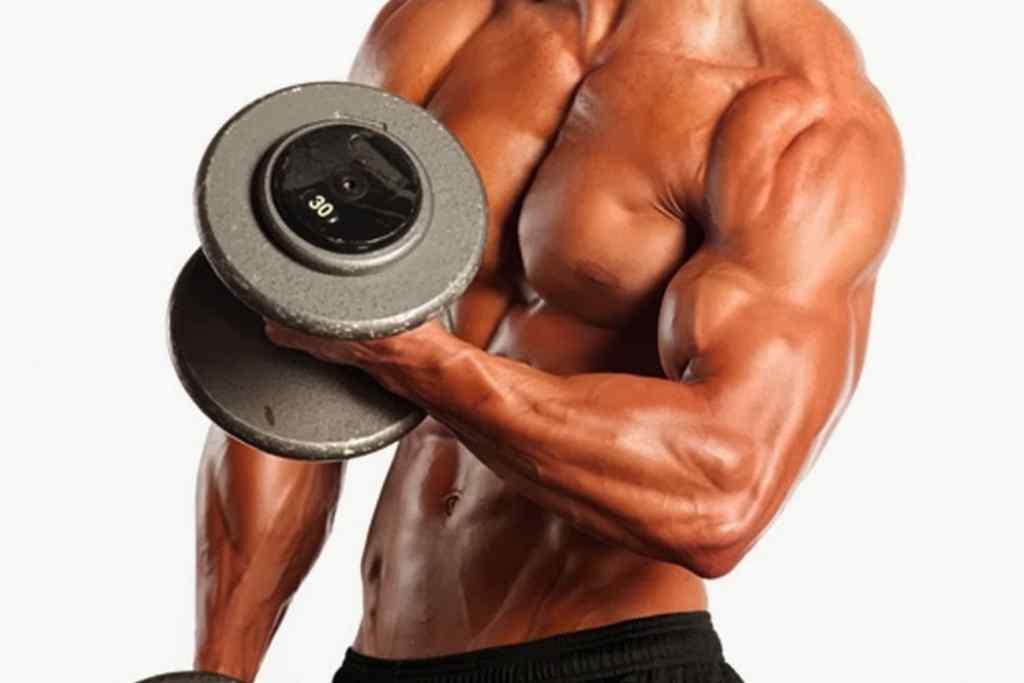 Como tener unos brazos mas grandes y musculosos - Miembro Fitness