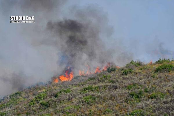 Πυρκαγιά στη Φρέγκαινα Αργολίδας