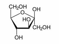 Glikoz Fruktoz Galaktoz