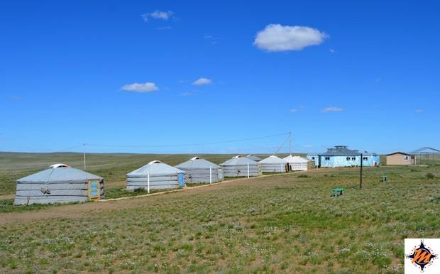 Erdene Ukhaa Ger Camp, nei pressi di Baga Gazryn Chuluu