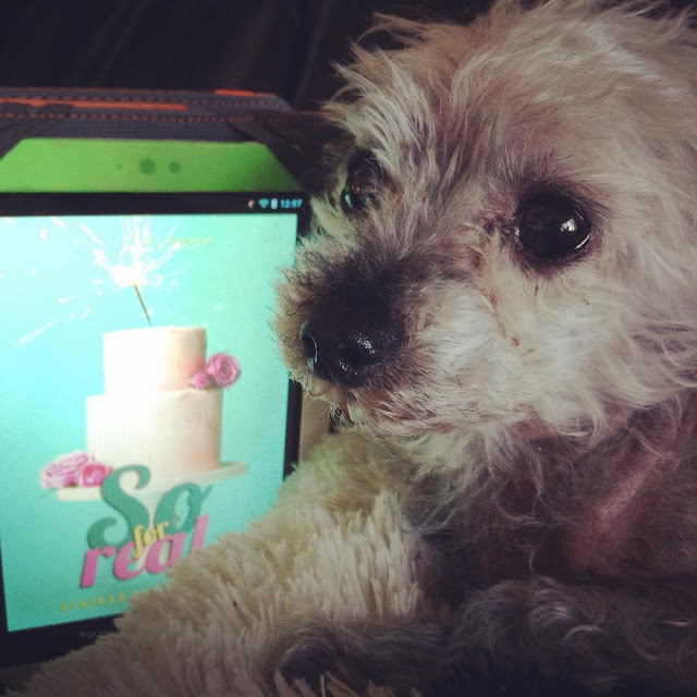Murchie lies with his head raised. Behind him is a white Kobo with So For Real's turquoise cover on its screen. The cover features a white three-tiered wedding cake with a sparkler coming out of it.