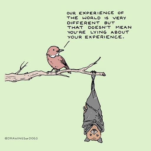 """A bird on a branch says to a bat hanging upside down: """"Our experience of the world is very different but that doesn't mean you're lying about your experience"""""""