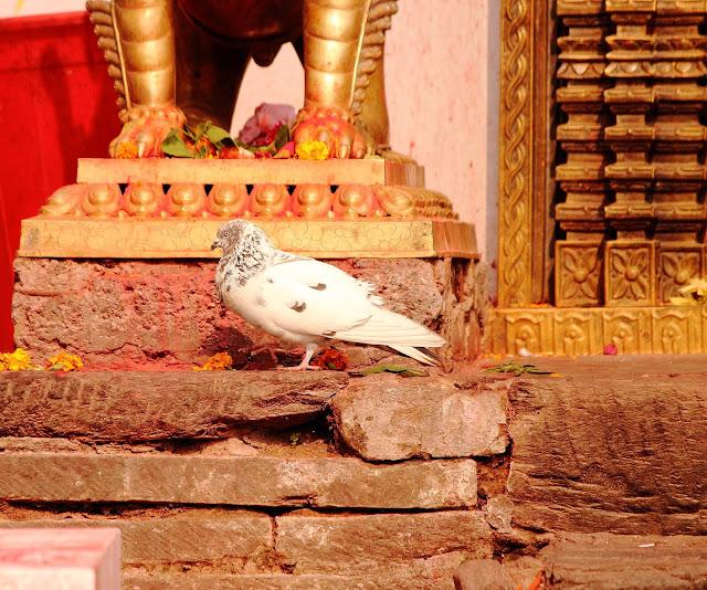 Travel Itinerary on Kathmandu