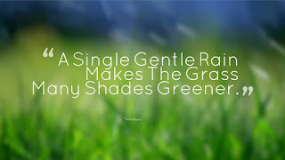A-Single-Gentle-Rain-Makes-The-Grass-Many-Shades-Greener Rainy Quotes