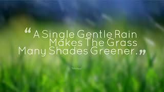 A-Single-Gentle-Rain-Makes-The-Grass-Many-Shades-Greener Rainy Quotes
