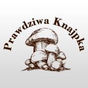 recenzja, opinie o lokalu, Lwówek Wielkopolski, daylicooking
