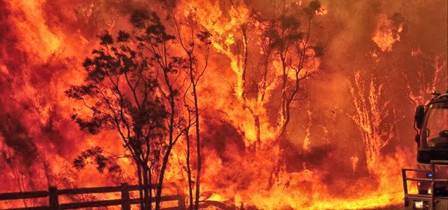 bushfire - photo #37