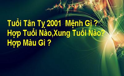TU VI TAN TI 2001