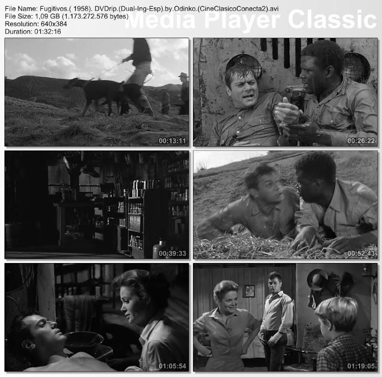 Fugitivos | 1958 | The Defiant Ones | Capturas de pantalla