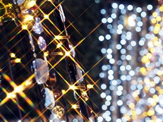 ウォッチ 腕時計 TENDENCE テンデンス  12月号 VERY ベリー 優木まおみ クリスマス  プレゼント ブランド ファッション セレクト  アクセント LEON レオン 300 限定