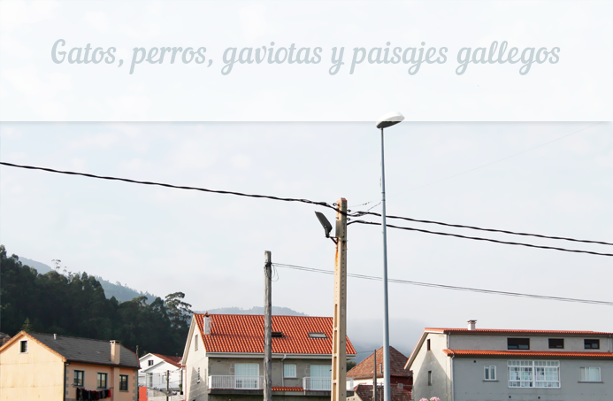 paisajes galicia pontevedra