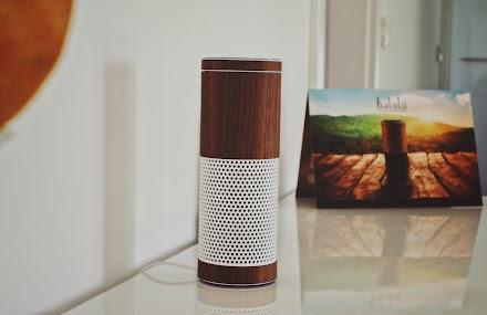Meine Alexa hat jetzt ein balolo® Echtholzcover und ist sexy as fuaq