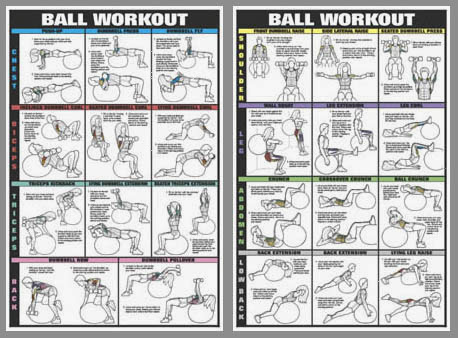 diary of a fit mommy fitness ball workouts