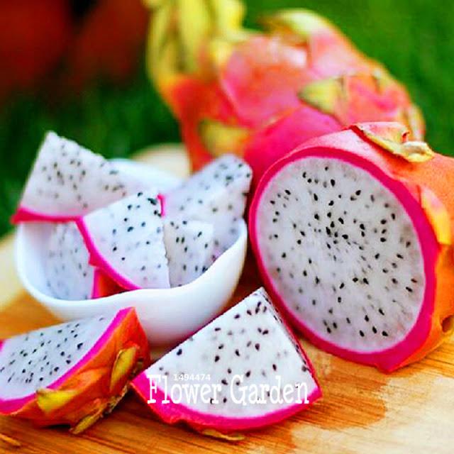 La fruta del dragón (pitaya)