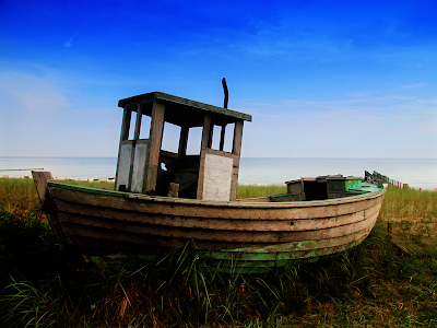 landscape, seashore