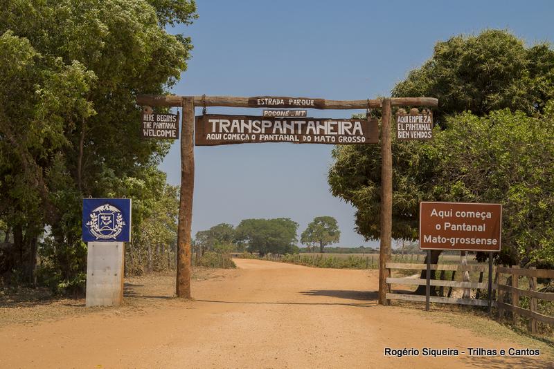 Transpantaneira Pantanal Mato Grosso