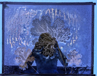 Wet cyanotype, Sue Reno, Image 31