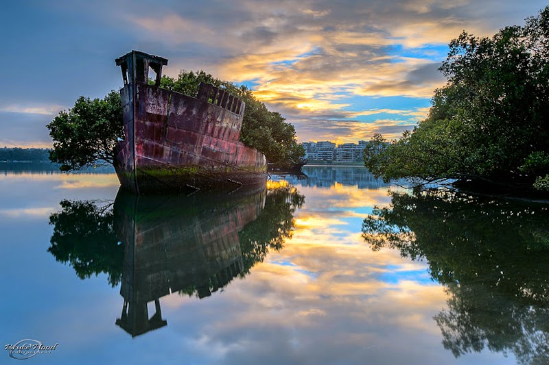 3. Floating Forest, Sydney - 31 Haunting Images Of Abandoned Places That Will Give You Goose Bumps