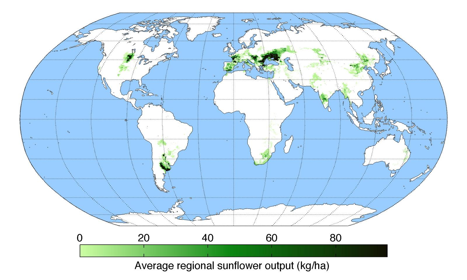 The sunflower crop around the World