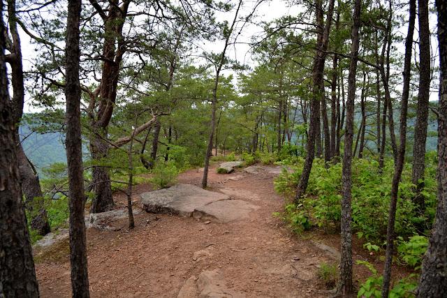 Стежка Лонг Поінт, Парк Нью-Рівер-Гордж, Західна Вірджинія (New River Gorge Park, WV)
