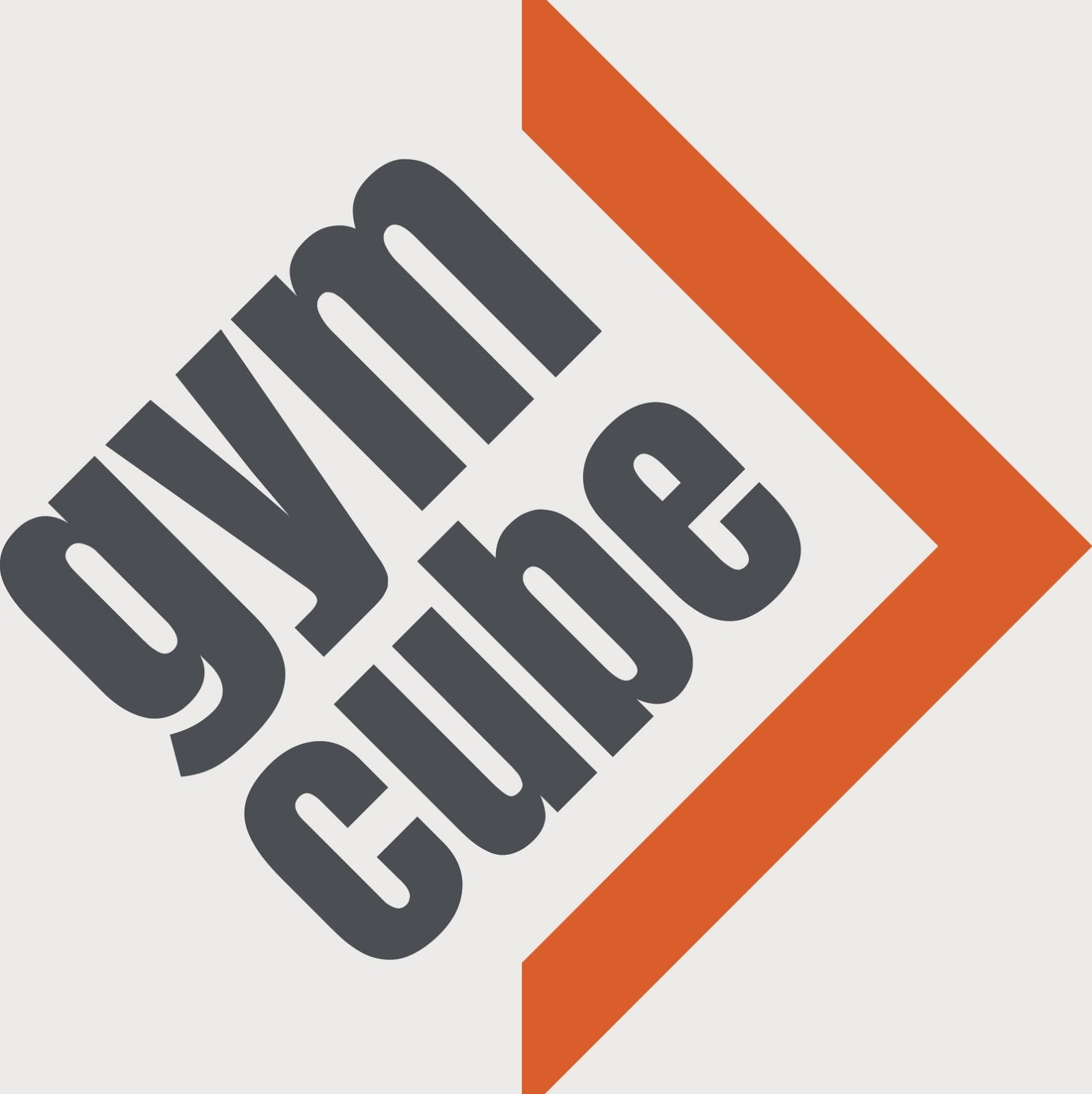 GymCube, lose 2 dress sizes in 6 weeks, Reebok
