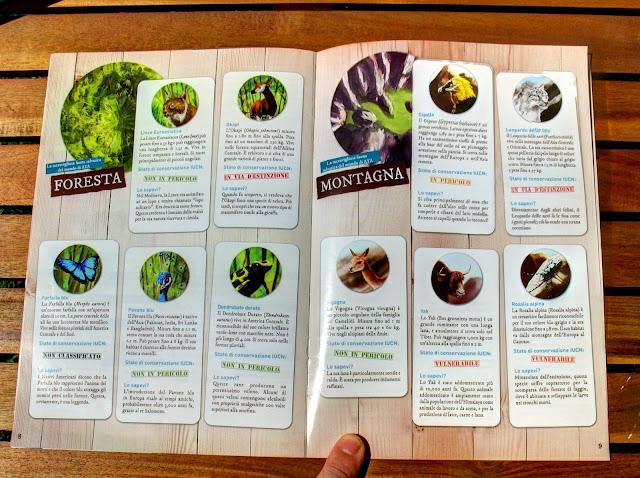Foto di alcune pagine del manuale di AYA