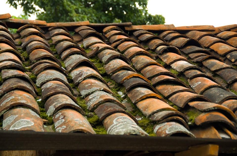 Tejados r sticos vegetales - Dibujos de tejados ...