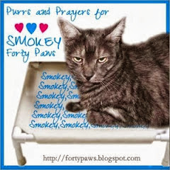 Purrs for Smokey.