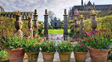 Tulipanes en Arundel Castle