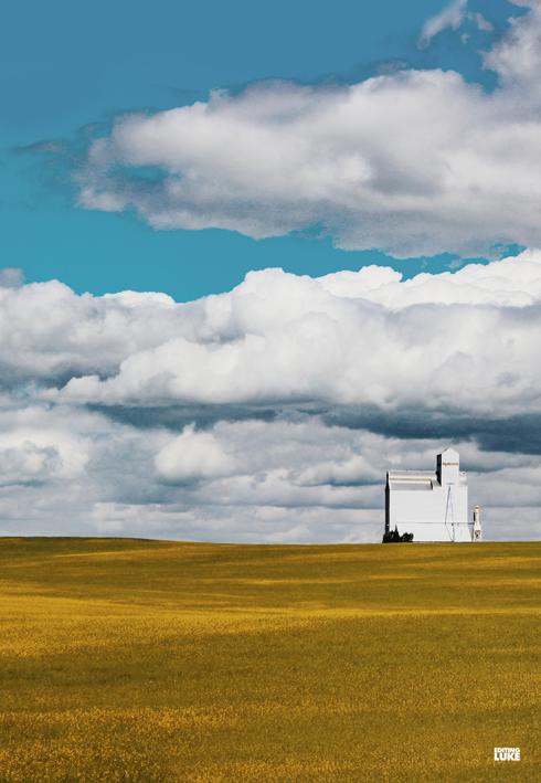 Prairie Visual Vibes Alberta Saskatchewan
