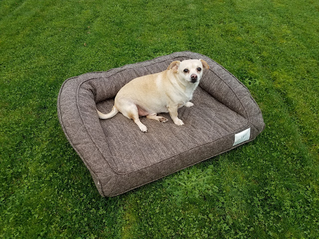 Brentwood Home Deluxe Orthopedic Pet Bed Giveaway!