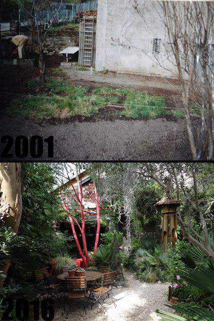 (07) Le jardin de Bésignoles - Privas - Page 3 Montage%2B4